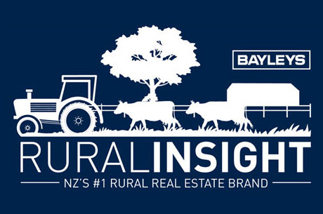 Rural Insight Graphic