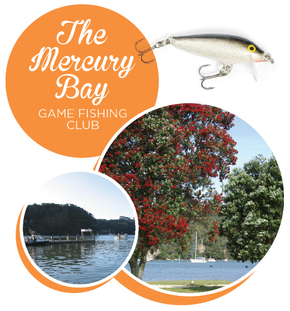 The Mercury Bay